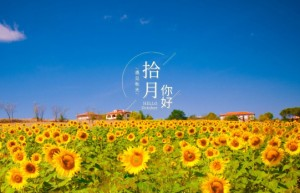2021年二级建造师管理【赵春晓】习题班视频教程下载