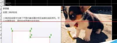 cad文件怎么快速插入一张图片?