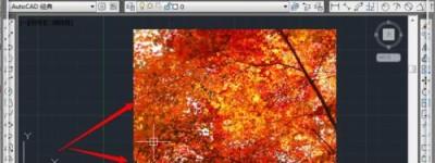 cad图片边框怎么去除? cad中插入图片取消边框的教程