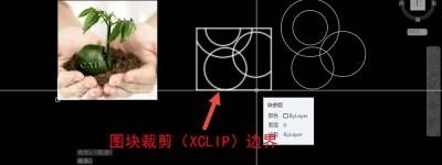 CAD图片边框怎么删除? cad去掉图片边框的教程
